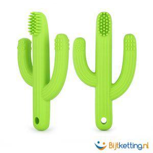 bijtketting cactus tandenborstel eigenschappen